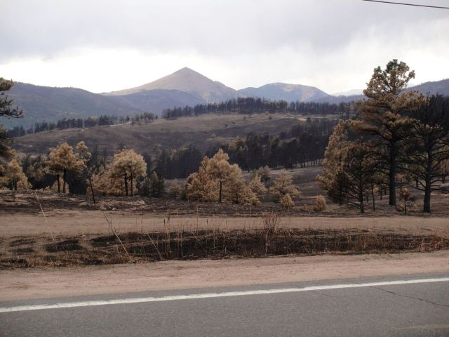 Fourmile Fire Damage along Sunshine Canyon